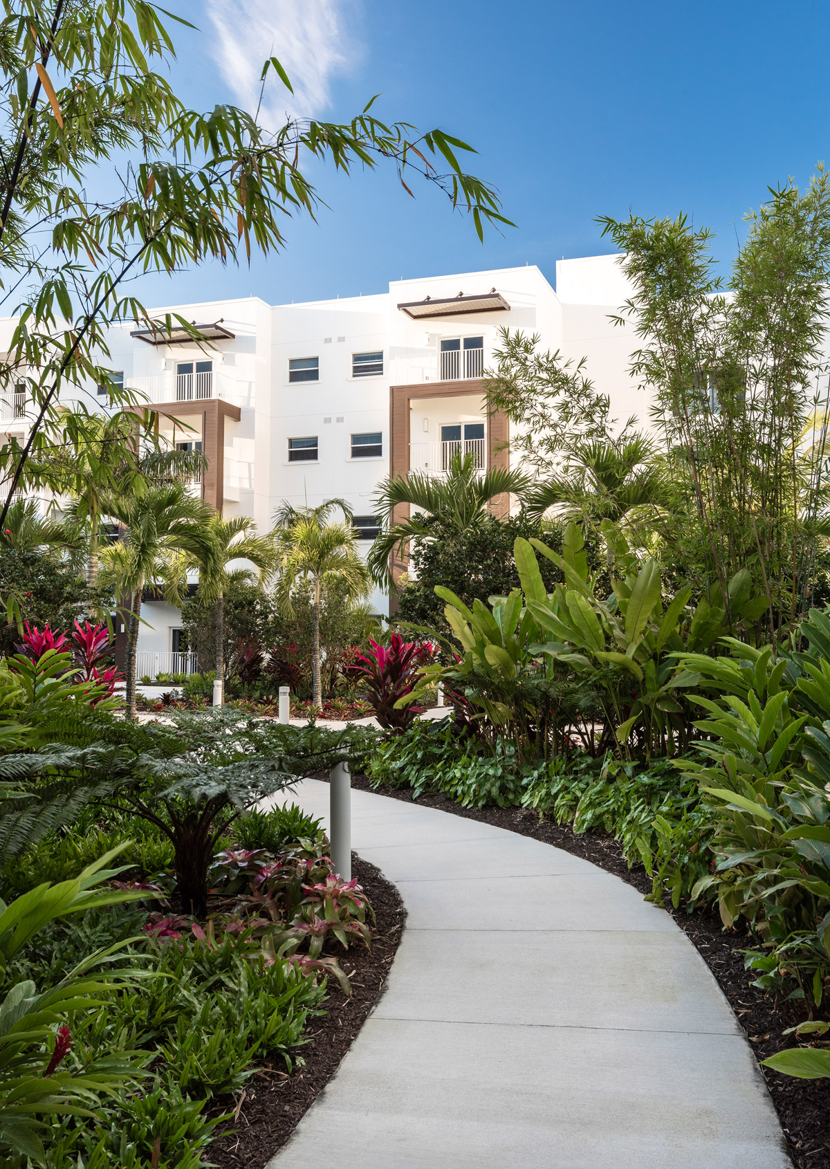 While crossing through the courtyards throughout the campus you will be greeted by beautiful Florida folage which continually bloom and attract butterflies.
